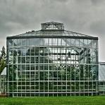 Botanischer Volkspark Berlin 2014 Sommer © Lutz Griesbach_21