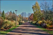 Botanischer Volkspark Berlin 2015 Herbst © Lutz Griesbach_30
