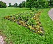 Britzer Garten 2012 Sommer