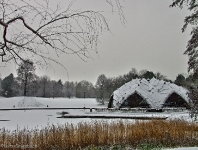 Britzer Garten 2012 Winter