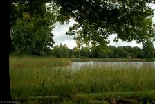 Britzer Garten 2013 Herbst