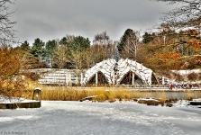Britzer Garten 2013 Winter