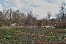 Britzer Garten 2014 Frühjahr