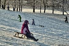 Britzer Garten 2014 Winter