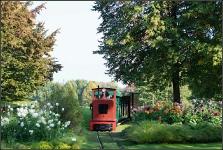 Britzer Garten 2015 Dahlienfeuer © Lutz Griesbach_122