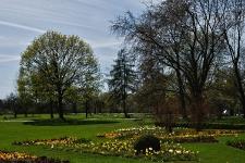 Britzer Garten 2015 Frühjahr © Lutz Griesbach_114
