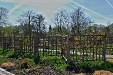 Britzer Garten 2015 Frühjahr © Lutz Griesbach_163