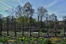 Britzer Garten 2015 Frühjahr © Lutz Griesbach_165