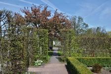 Britzer Garten 2015 Frühjahr © Lutz Griesbach_22