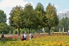 Gärten der Welt Berlin 2013 Sommer © Lutz Griesbach_247