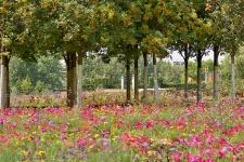 Gärten der Welt Berlin 2013 Sommer © Lutz Griesbach_255