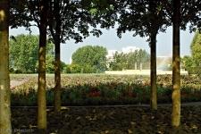 Gärten der Welt Berlin 2013 Sommer © Lutz Griesbach_64