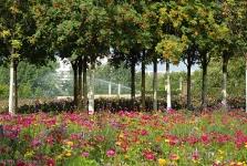 Gärten der Welt Berlin 2013 Sommer © Lutz Griesbach_7