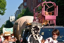 Karneval der Kulturen Berlin 2013 © Lutz Griesbach_148